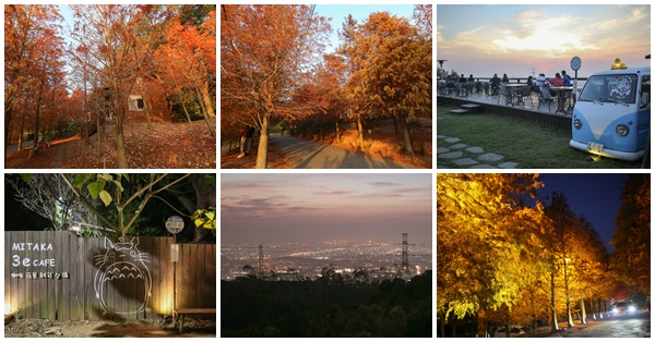 台中沙鹿|MITAKA 3e CAFE|咖啡|夜景|雜貨|夕陽|上百棵的落羽松