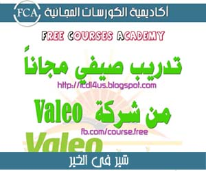تدريب صيفي مجاني من شركة فاليو | Valeo Free Summer Training