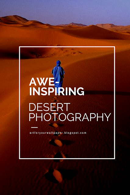 Awe-Inspiring Desert Photographies that Will Actually Make You Want to Go There
