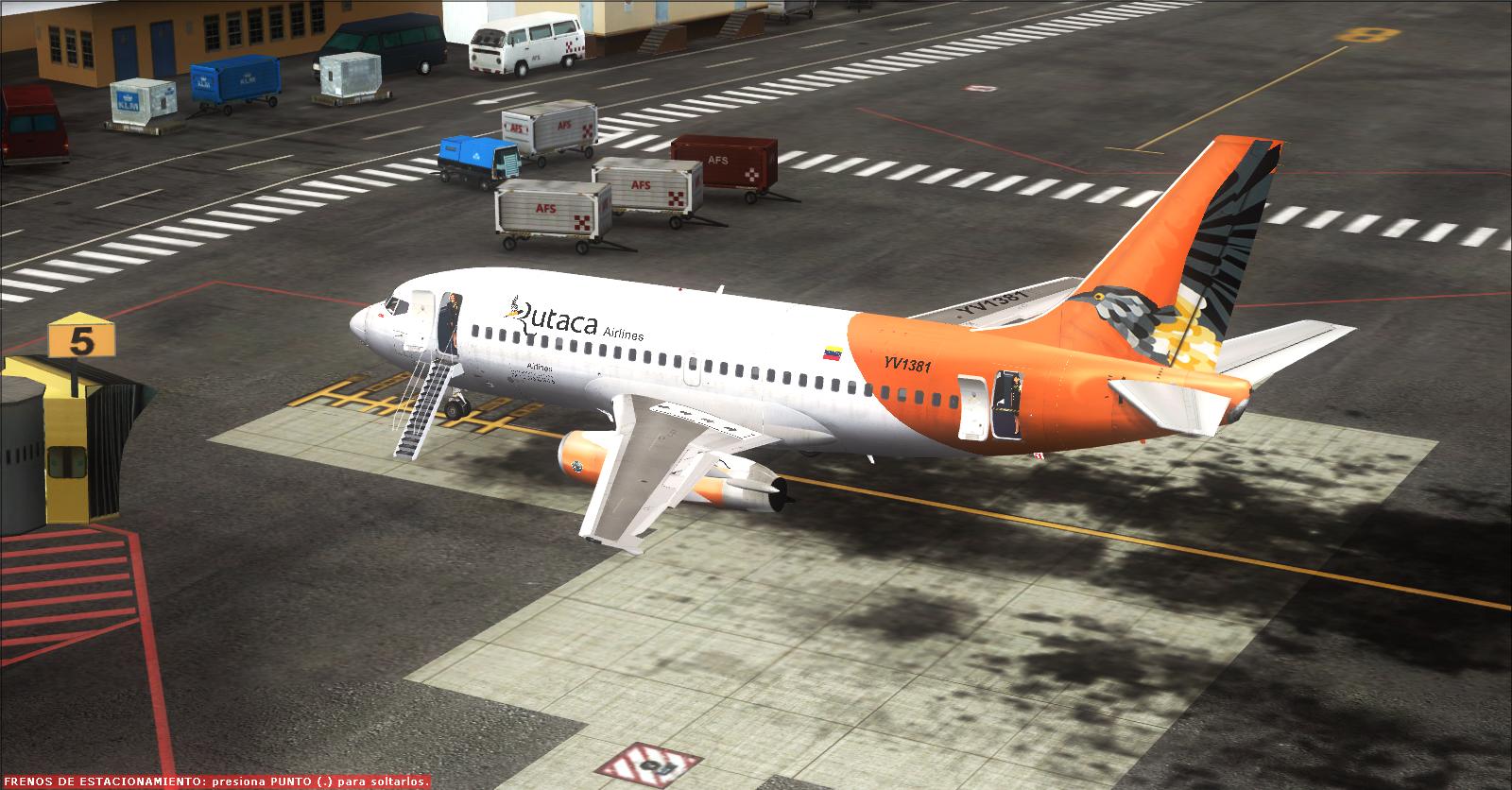 Tinmouse 737 Fsx