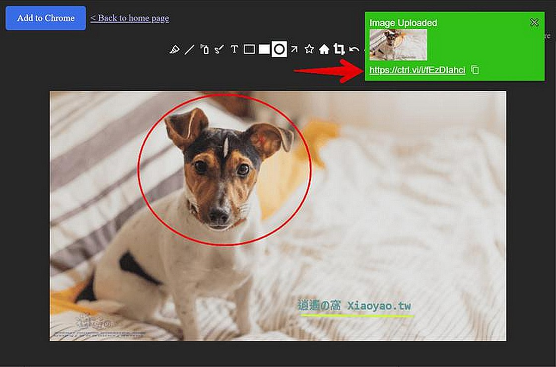 Control V 複製&貼上就能分享圖片