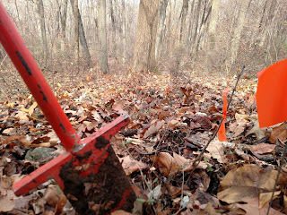 Planting oak seedlings for FoHVOS Deer Management Program