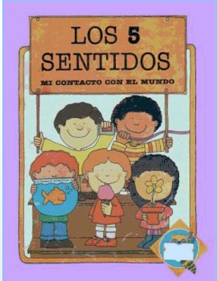 los cinco sentidos para niños de preescolar