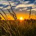 Suomalaiset tutkijat tuottavat ensimmäistä kertaa ilmastosimulaatioita IPCC:n arviointiraporttiin