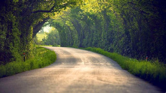 Papel de Parede Natureza Estrada, nature wallpaper hd image free