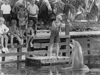 Jelenet a Flipper (1963) című filmből