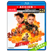 Ant-Man and The Wasp. El hombre hormiga y La avispa (2018) 4K UHD Audio Dual Latino-Ingles