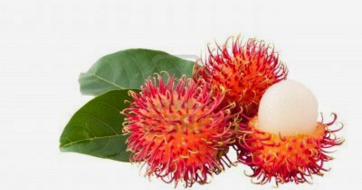 10 Gesundheitliche Vorteile von Rambutan