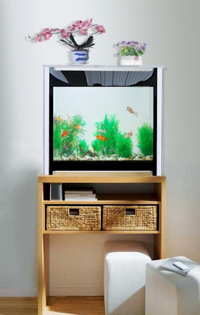EverClean Aquarium