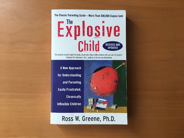 book the explosive child