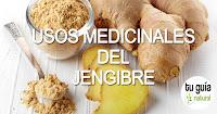 https://steviaven.blogspot.com/2018/03/usos-medicinales-externos-internos-jengibre.html
