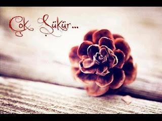 türkçe şükür duası