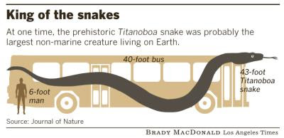 comparacion de Titanoboa