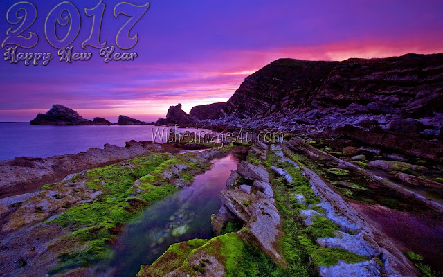 Happy New Year 2017 Full HD Nature Desktop Wallpapers download Free