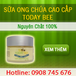 SỮA ONG CHÚA TODAY BEE
