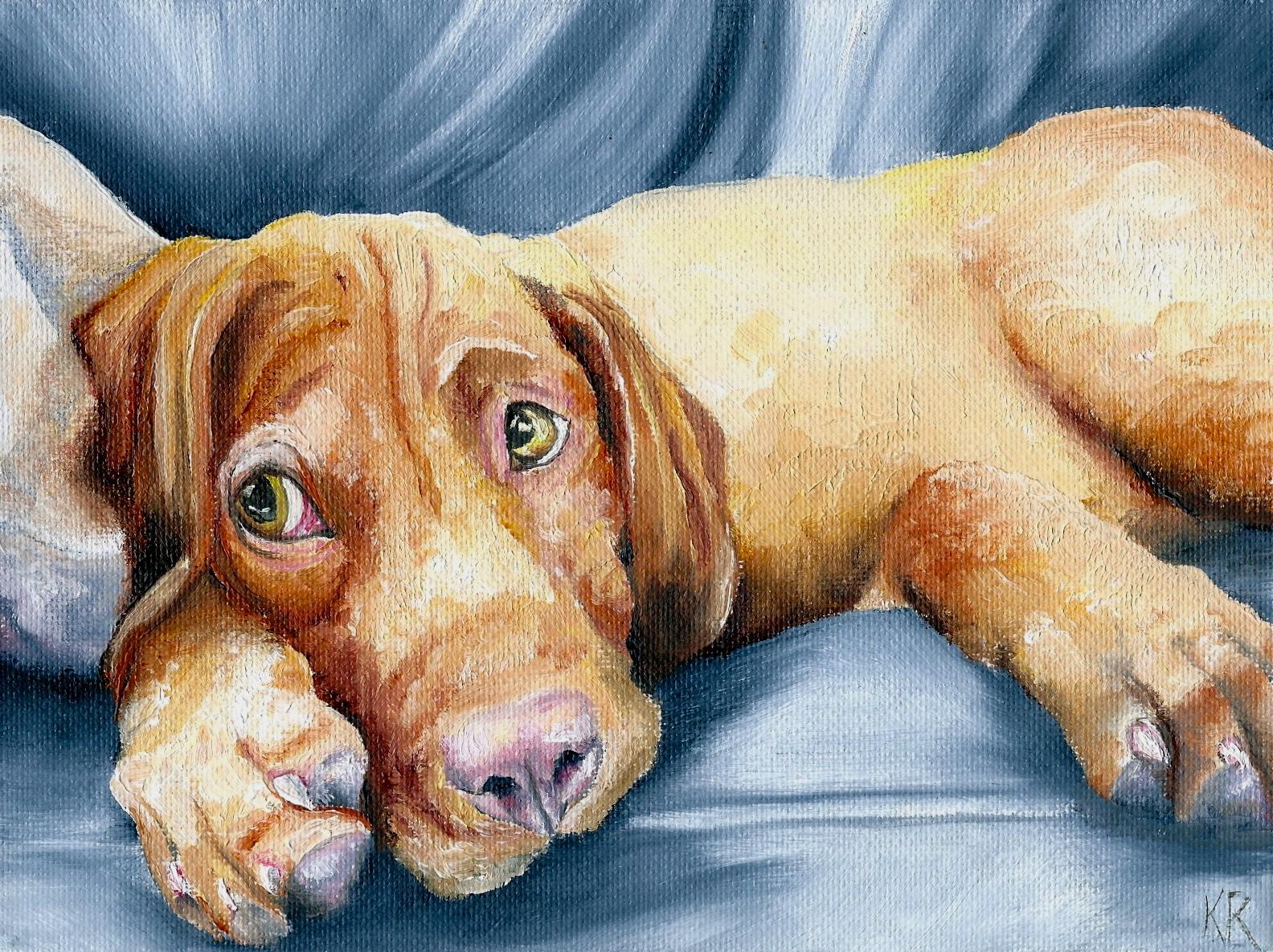 dog and pet paintings vizsla puppy. Black Bedroom Furniture Sets. Home Design Ideas