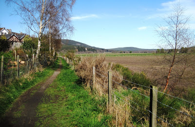 East of Ballater, Deeside