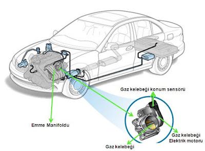 gaz-kelebeği-konum-sensörü nerede konumu