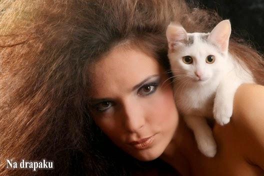 Koty i kobiety