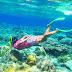 +6282233363399 - Paket Wisata Pulau Menjangan Tour Sehari Start Kota Malang