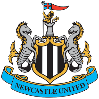 Logo Newcastle United DLS