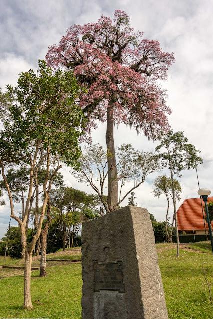 totem de pedra com placa de bronze e árvore na Praça General Werner Gross