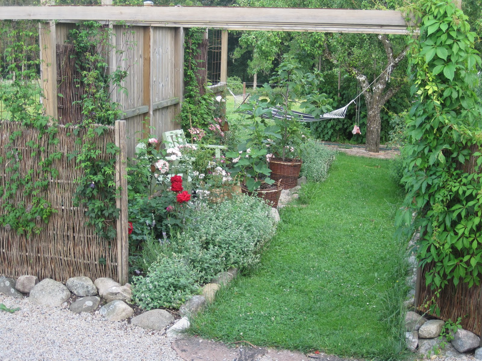 1000+ Images About Woodland Garden Design Ideas On