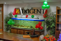 Trigent-Software-walkin-freshers-support-engineers