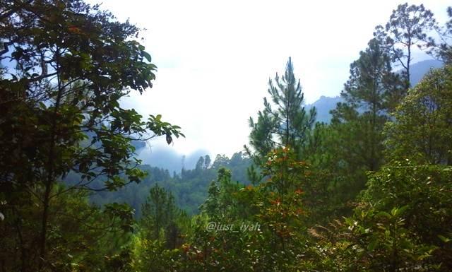 Pemandangan dari Aek Nauli