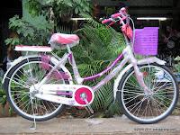 City Bike Everbest 905-2 24 Inci