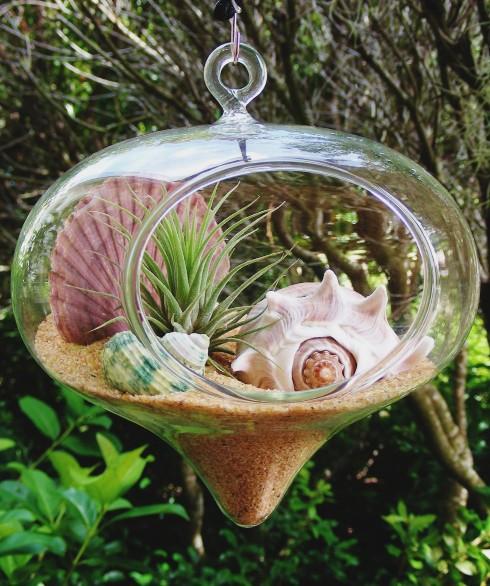 Hanging Glass Globe Terrarium Ideas With A Coastal Beach Theme