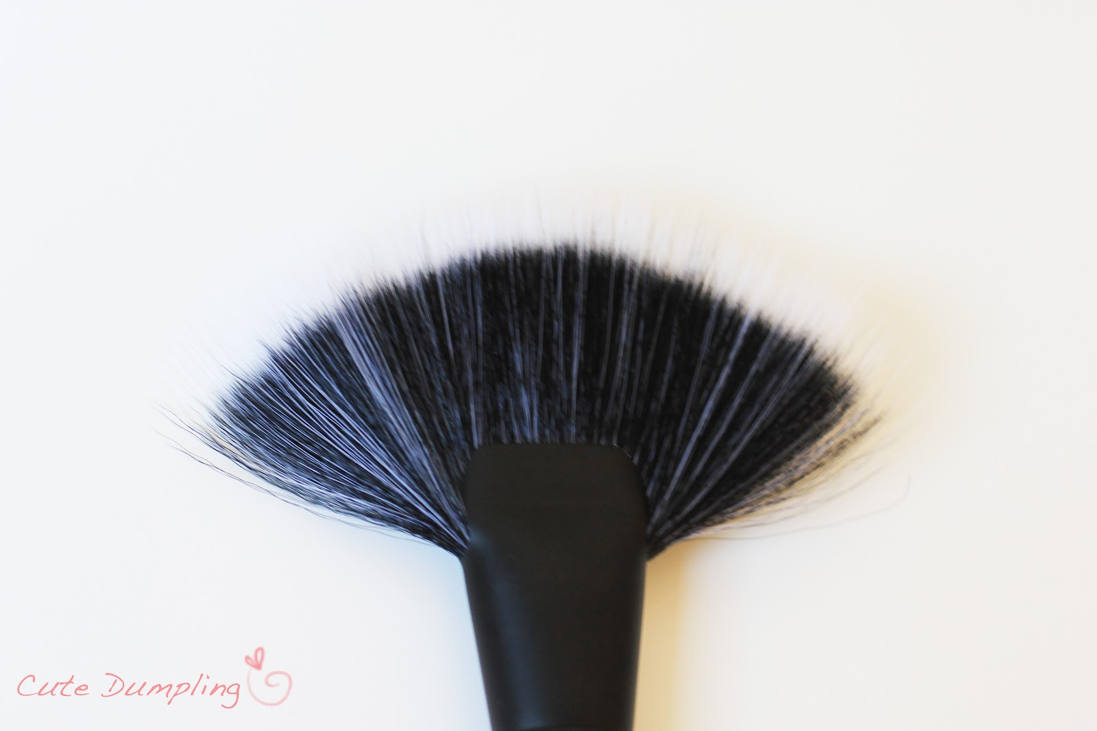 Cute Dumpling: REVIEW: Coastal Scents Brushes *PIC HEAVY*