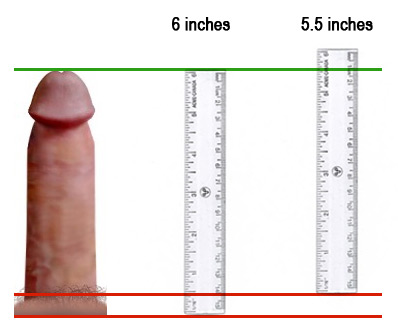To Measure Cock Size 50