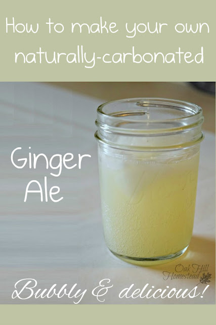 How to make naturally-carbonated ginger ale from real ginger; no artificial ingredients and it's delicious!