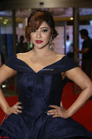 Payal Ghosh aka Harika in Dark Blue Deep Neck Sleeveless Gown at 64th Jio Filmfare Awards South 2017 ~  Exclusive 089.JPG