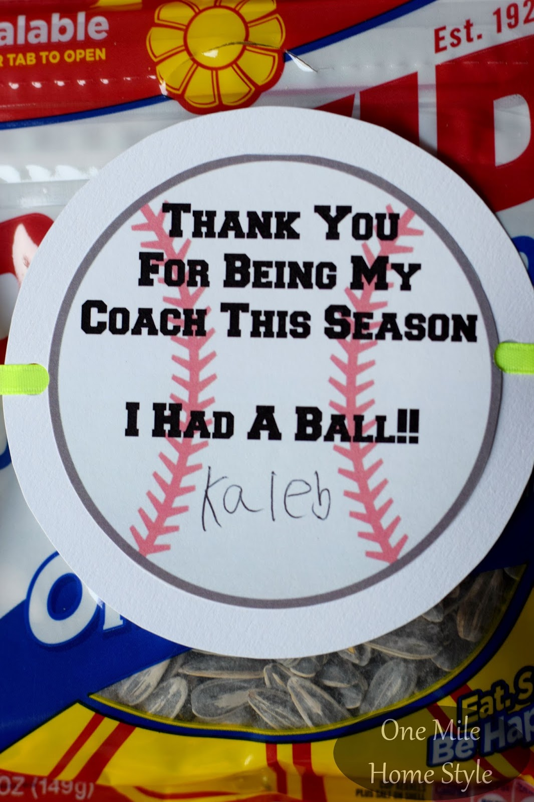 End Of The Baseball Season Coach S Gift With Printable Tag One Mile Home Style