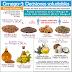 NUTRICIÓN VEGETARIANA PURA: Ácidos grasos (lípidos)