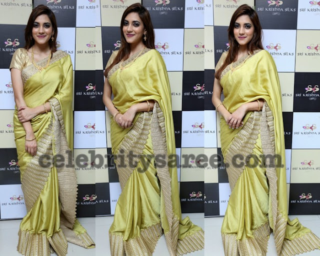 Sita Narayan Lace Saree