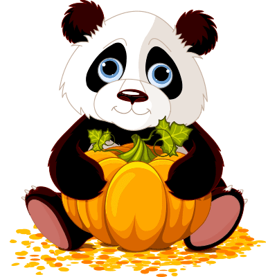 Pumpkin patch panda