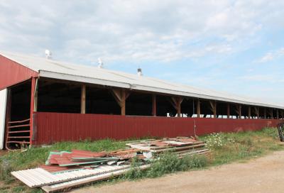 Donn Show Cattle Barn Plans 8x10x12x14x16x18x20x22x24