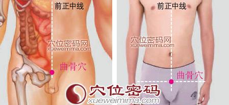 曲骨穴位 | 曲骨穴痛位置 - 穴道按摩經絡圖解 | Source:xueweitu.iiyun.com