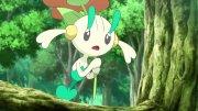 Pokémon XY&Z - Episódio 11 - Assistir Online