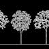 بلوكات أشجار Bloc arbre pour Autocad dwg
