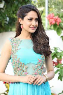 Actress Pragya Jaiswal New Stills in turodu Movie  0003.JPG