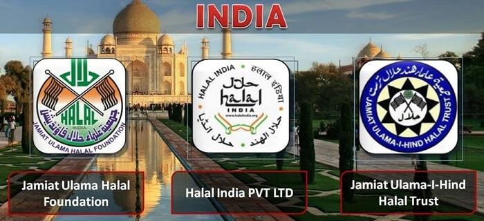 Logo Halal India