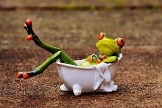 Sapinha na banheira com as patinhas levantadas.