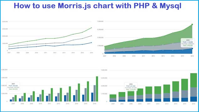 How to use Morris js chart with PHP & Mysql | Webslesson