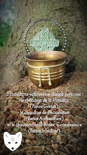 Chaudrons vatiques druidiques