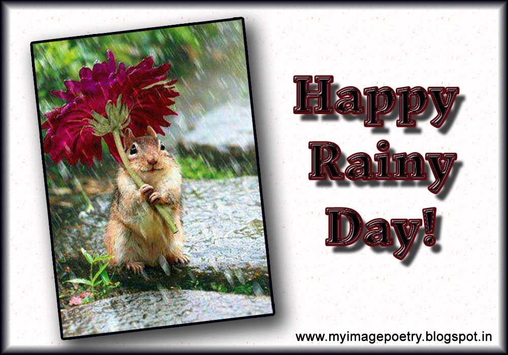 Image Poetry: Happy Monsoon Images