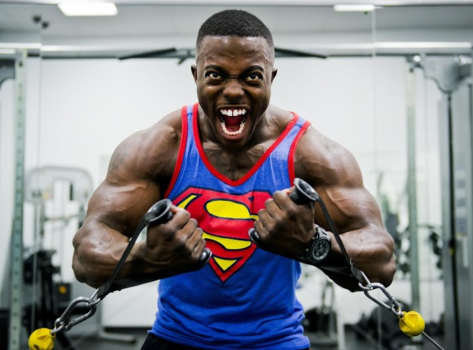The Full Body Workout Ultimate Guide! 2019